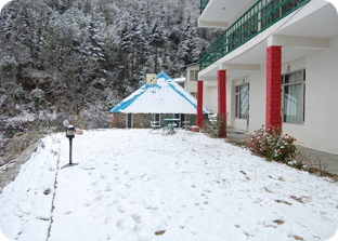Hotels in Chail, Resorts in Chail, Bubget Hotels in Chail, Fernhill Resort Chail,